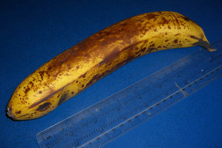 Banana, 225 mm long